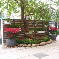 Mẫu trang trí sân vườn Vinhome Thăng Long